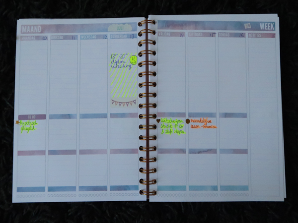 Mascha planner 9